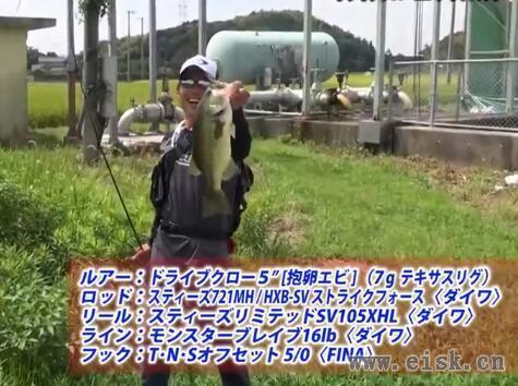Worming Tips Files_005〜ドライブクロー5編 by川村光大郎〜