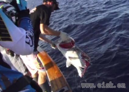 《决战深海》第四集——海钓的魅力所在