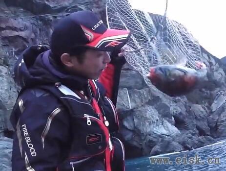 2016年遊撃釣行部隊の初釣行!大分県米水津(トリノスカツアジロ)