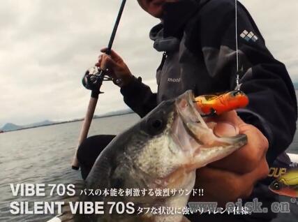Bass Fishing HARDCORE X - in Lake Biwa(737)