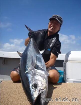 RippleFisher Aquila813 AY Swim