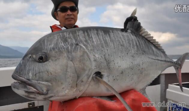 GT fishing with RippleFisher FS GT79H Nano Ul83ML GT711Power