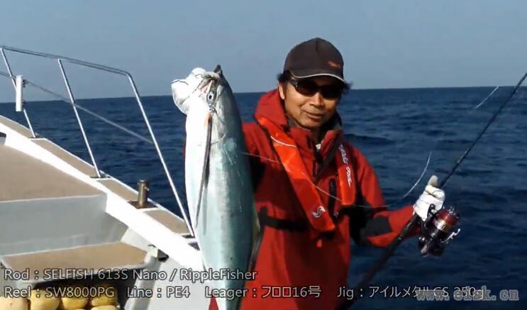 Yellowtail fishing with RippleFisher SELFISH622S Nano