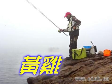 釣具工房 磯釣粉實戰 巨物千又 台山三杯篇
