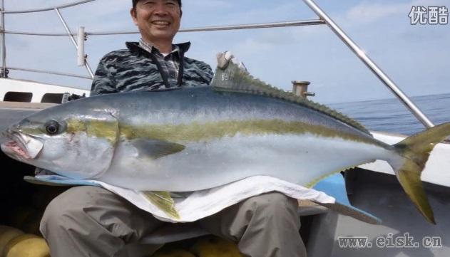 YellowTail Casting with RippleFisher Aquila856 Nano in Genkainada