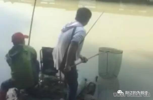 阳江钓友麻演手竿上9斤半鲤鱼