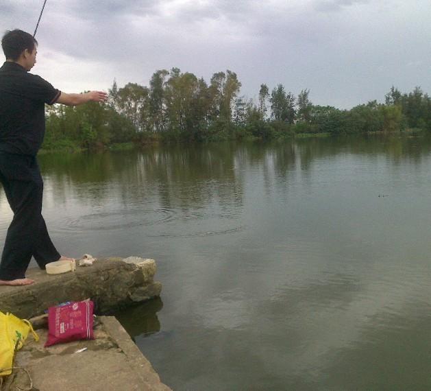 阮西水闸 山清水秀 钓鱼好地方。