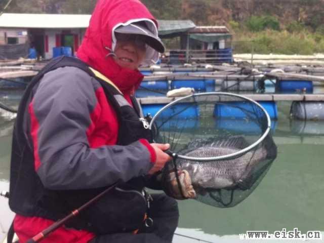 首探盐州鱼排-----成就筏杆面饵毕业