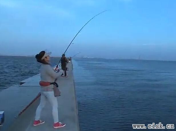 [日文]伽瑪卡茲--岸釣白帶魚