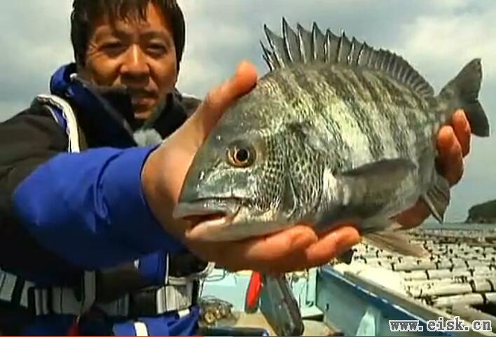 [日文]山本太郎筏钓