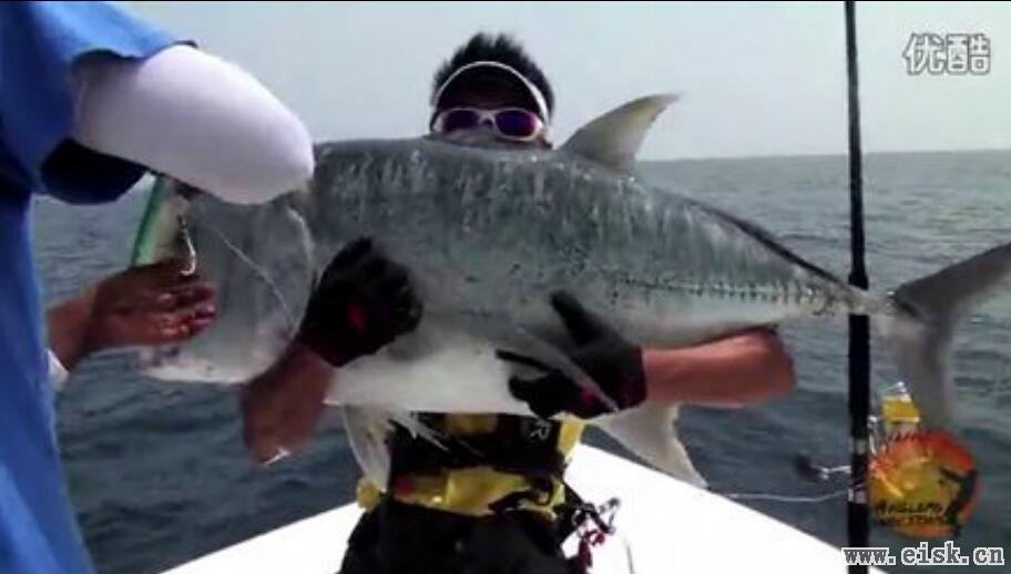 马尔代夫GT钓艇海钓的视频精集(一)
