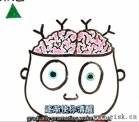 """当大脑""""嗑""""了咖啡"""