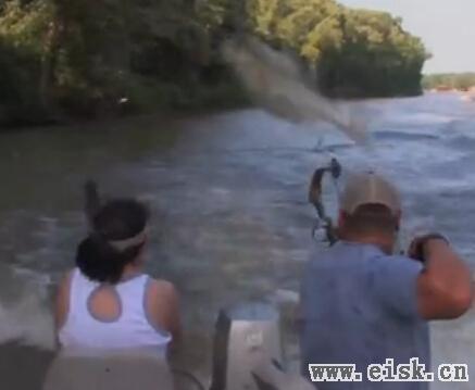 中国鲤鱼在美成灾 美国派陆军对抗鲤鱼!