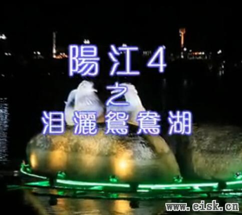 阳江金蝴蝶原创音乐《阳江4》高清版