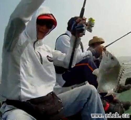 何亮面饵HELIANG阳江·闸坡·东岛