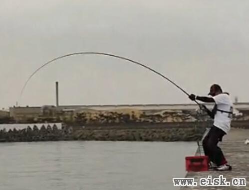 海钓大鱼视频_原创矶钓防波堤的怪物