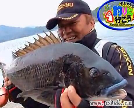 夢の60黒鯛