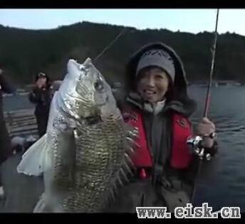 兼松伸行--筏鯛攻略