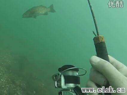 太会玩了!在水底钓鱼,看着鱼儿上钩!