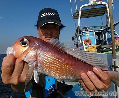《Rapala游钓世界—日本篇》14种鱼的什锦钓