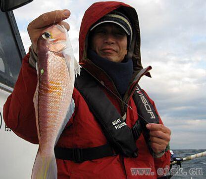《Rapala游钓世界—日本篇》你钓过方头鲷吗