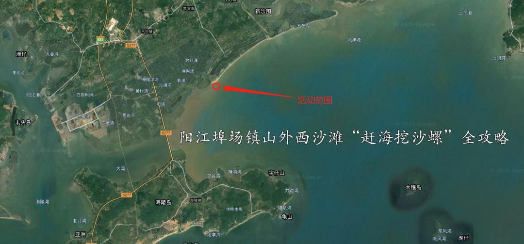 """阳江埠场镇山外西沙滩""""赶海挖沙螺""""全攻略"""