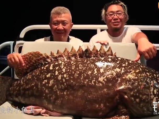 100多斤的大石斑鱼你见过吗?这位钓鱼人给钓上来了!