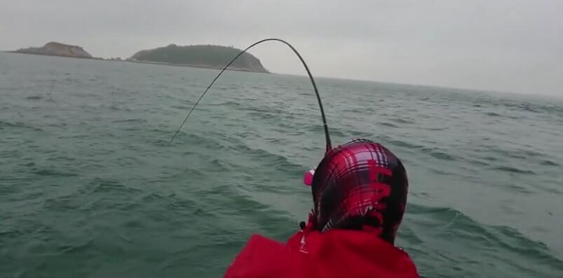 钓鱼人出船爆钓鱲鱼,大黑鲷大牛屎漂亮的真鲷,渔获真让人羡慕